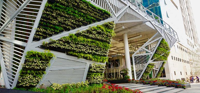 Living Wall Creating Vertical Garden Green Facade Wfm Media